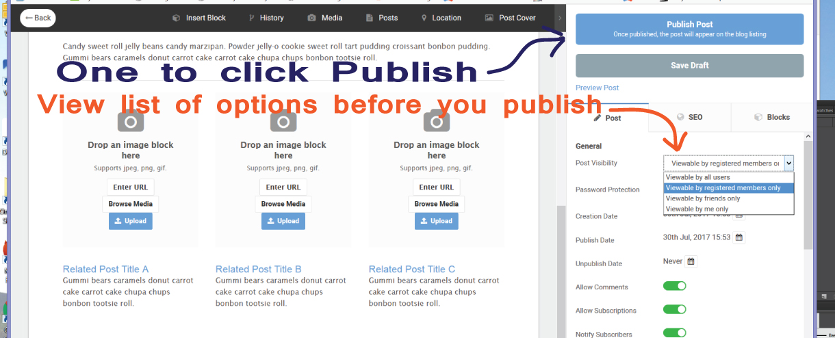 blogpublish1