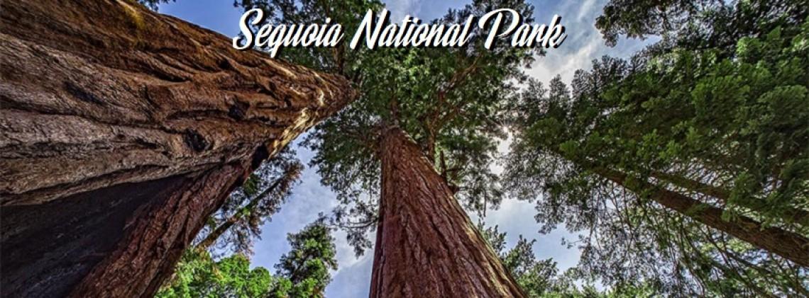 Sequoia RV Ranch Kamp trip (Summer)