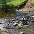 Bluff Creek Falls
