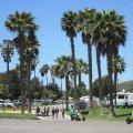 Ventura Beach RV Resort