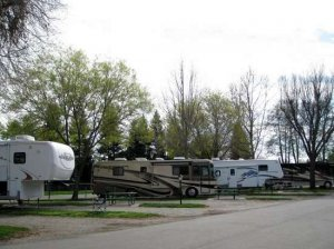 Almond Tree RV Park (Chico)