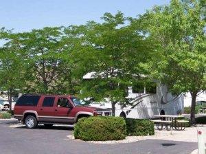 American RV Park (Albuquerque)